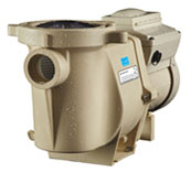 IntelliFlo is the finest variable speed pumps on the market for replacing your aging pump in the university park of dallas Texas area