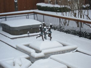 Select Pool Services swimming pool winter freeze up emergency closings university park north dallas