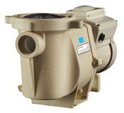 Intelli Flo VSP swimming pool pump, motor, and filter to replace old worn down unit in Plano, Dallas, Carrollton, or Frisco Texas. Select Pool Services is your best choice