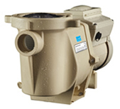 Select Pool Services of Carrollton Texas installs, maintains, and repairs the Inteliflow variable speed swimming pool pump in McKinney Tx to achieve the utmost efficiency for inground pools