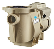 Select Pool Services of Carrollton Texas installs, maintains, and repairs the Inteliflow variable speed swimming pool pump in Frisco Tx to achieve the utmost efficiency for inground pools
